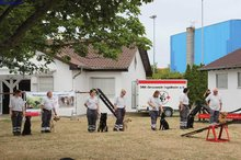 Wiesenfest 2015 050